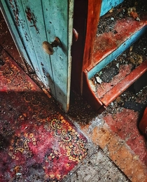Old rural Ontario farmhouse with a lot of bright colours underneath the grime and decay