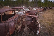 Old rusty automobile in a defunct salvage yard ocx