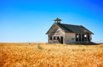 Old school house in a wheat field