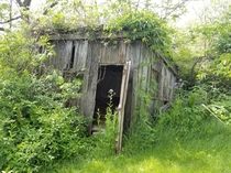 Old shed I found on the back of my property