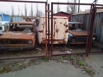 Old Soviet cars rusting away