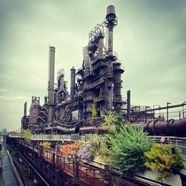 Old Steel Mill with vegetation