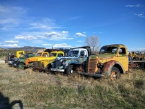 Old tow trucks Buena Vista CO