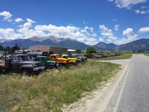 Old trucks in Buena Vista CO