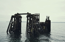 Old wooden dock on the coast of Port Townsend WA OC