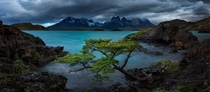 Ominous skies over Lake Peho Chilean Patagonia Photo by Bruce Hood