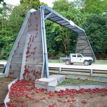 On christmas island they have bridges for the red crabs to cross roads safely when migrating to their breeding grounds