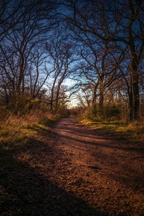 On my way home Arbor Hills Nature Preserve in Carrollton TX