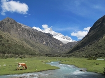 On the way to Laguna  Huascaran National Park Peru