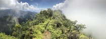 On the way to mount Aorai Tahiti French Polynesia m  yes its as steep as it looks