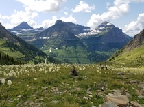 On the way to the chalet at Glacier National Park MO I distinctly remember this hike because i had to duck down on the mountain when an eagle pecked a flying crow not so far from where I was