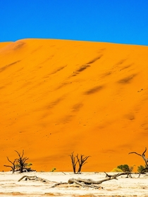 One more picture from Deadvlei Namibia