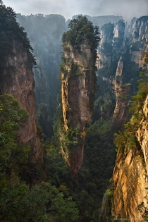 One of a Kind - quartzite sandstone pillars in Wulingyuan China  photo by Thomas Dawson