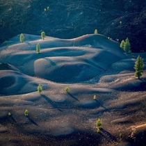 One of Californias most surreal landscapes the Painted Dunes