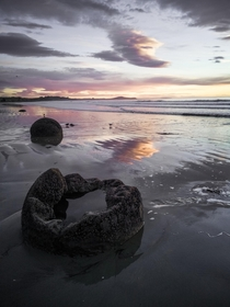 One of my favorite memories from NZ was watching the sunrise at the Moeraki Boulders -