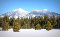 One of my favorite pictures of the San Francisco Peaks -- the highest point in Arizona