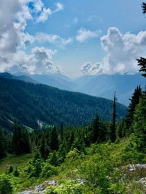 One of my favorite views from  days backpacking through Olympic National Forest