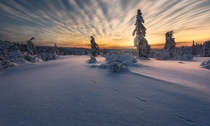 One of my favorite winter sunrises in Kongsberg Norway