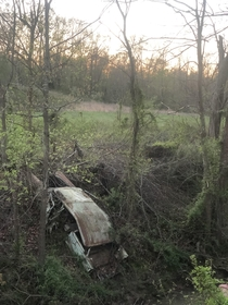 One of several old cars dumped in the creek in southeast Missouri