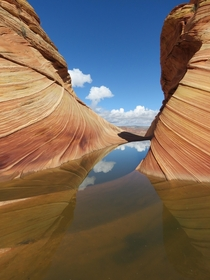 One of the best days of my life The Wave North Coyote Buttes Arizona