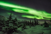 One of the best nights I had in Troms in Norway  chasing Northern Lights  More of my Northern Lights IG glacionaut