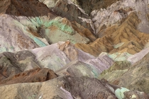 One of the coolest places I have ever been Artists Palette Death Valley California