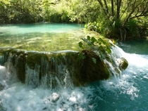 One of the lakes in national park Plitvice Croatia