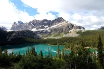 One of the most beautiful hikes Ive ever done to see Lake OHara Yoho National Park