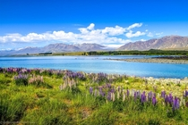 One of the most breathtaking countries in the world Lake Tekapo  New Zealand