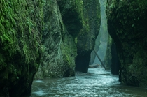 Oneonta Gorge Columbia River Gorge Oregon OC