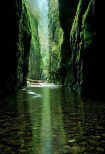 Oneonta Gorge Oregon