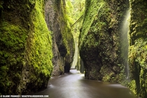 Oneonta Gorge Oregon - Blaine Franger Photography