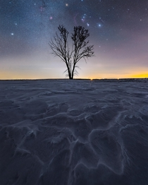 Orion and the winter milky way over a frozen Saskatchewan field
