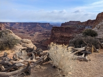 Outlook at the underrated Canyonlands National Park