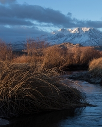 Outside the small town of Bishop California  IGzachgibbonsphotography