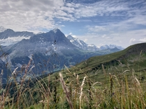Over the green hills and the alps far away Grindelwald Switzerland