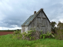 Overgrown barn returning to nature