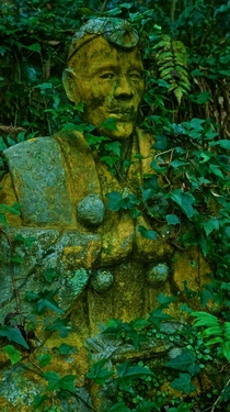 Overgrown Buddhist Statue deep in a forest in rural Hiroshima Japan