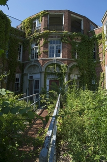 Overgrown building in Long Island NY