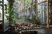 Overgrown courtyard at an abandoned psychiatric hospital