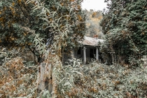 Overgrown Kentucky home - Nate Castner