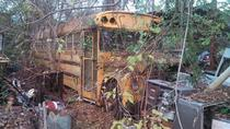 Overgrown school bus near Nacogdoches TX