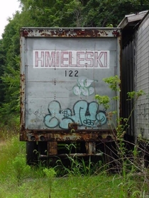 Overgrown semi trailer along NJ Transit line  Hmieleski II  Great American Railroad Series