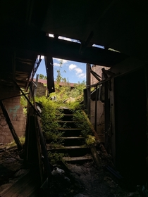 Overgrown Stairs of an Abandoned Boilerworks