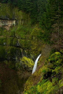 Overhead shot of elowah falls  Columbia River Gorge Oregon