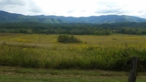 Overlook at Cades Cove Gatlinburg TN