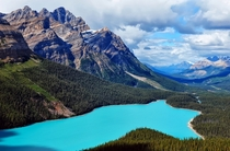 Overlooking Peyto Lake Banff National Park photographed by Jeff Clow