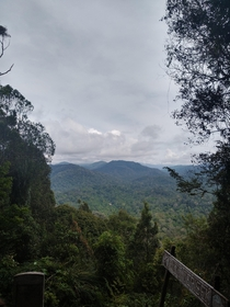 Overlooking the Malaysian rainforest from the highest point in the Taman Negara national park in Malaysia