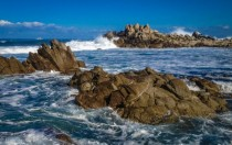 Pacific Grove Monterey