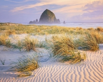 Pacific Northwest Pastel Sunset Cannon Beach OR